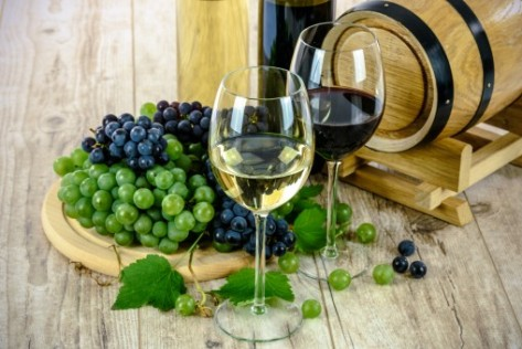 cumparam ferma viticola ecologica